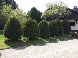 Schwarzwald - Villa Appartments Titisee, דירה בטיטיזי-נוישטאדט