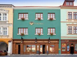 Černý Orel – Pivovar, Čokoládovna a Wellness Hotel, hotel in Kroměříž