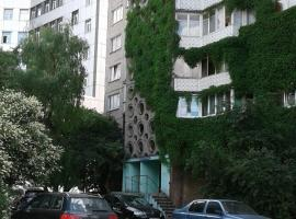 Apartment on Moskovskiy Prospekt 42 с relax dzhakuzi, pet-friendly hotel in Kaliningrad