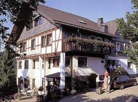 Pension Zur schönen Aussicht, budget hotel in Hallenberg