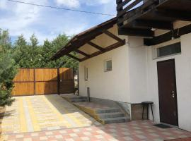 House Lesnoy Apartment with Sauna, country house in Minsk