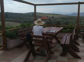 La Petite Planete, hotel in Mykines