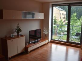 Apartment Mumlava falls, apartmán v destinaci Harrachov