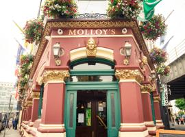 Molloys Apartments, apartment in Dublin