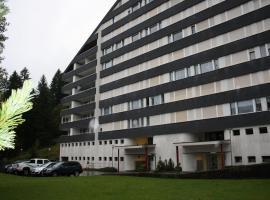 Apartmenthaus Gauenpark, hotel in Flumserberg