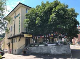 Hotel Ochsen, hotel near St. Gallen-Altenrhein Airport - ACH, Sankt Margrethen