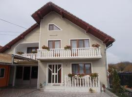 Vila Mara, hotel in Haţeg
