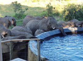 Nambiti Plains, lodge in Nambiti Private Game Reserve