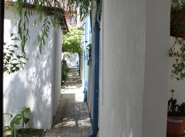 Hotel Vila Alex, hotel in Costinesti