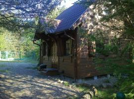 Dom WIKTOR Kaszuby do 5 os., spa hotel in Olpuch
