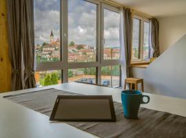 GGF - Grey green and fun in Slovenia Novo mesto - GGF BIG -73m2 and GGF Small -33m2, hotel v mestu Novo Mesto