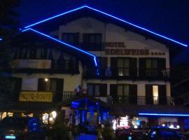 Hotel Edelweiss & SPA, hotel a Cesana Torinese