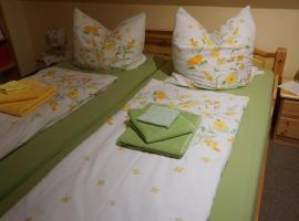 Ferienwohnung Charlotte, Bed & Breakfast in Dresden