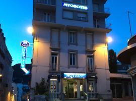 Hôtel Myosotis, hotel in Lourdes