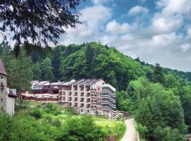 Hotel Dobru, отель в Слэник-Молдове