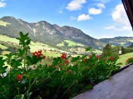 Appartements Kolberhof, Ferienwohnung in Alpbach