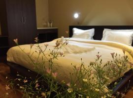 Panorama Green View Hotel Nuwara Eliya、ヌワラエリヤのホテル