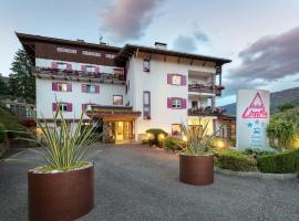Hotel Latemar, hotel in Castello di Fiemme