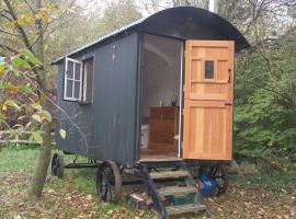 The Hut, glamping site in Ventnor