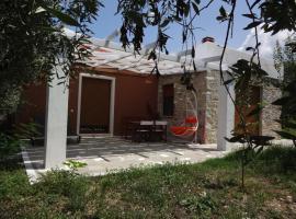 Elea Stone Houses in organic quiet olive grove, Prinos, Thassos, hotel in Skala Prinou