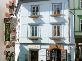 Hotel Leonardo, hotel in Český Krumlov