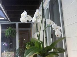 Private suite in magic cottage near Cruise Station, hotel perto de Vizcaya Museum, Miami