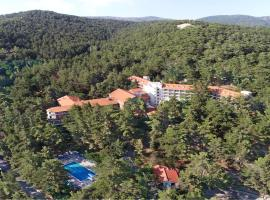 Forest Park Hotel, hotel in Platres