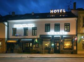 Hotel Solaster, отель в городе Тршебич