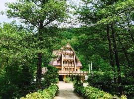 Pension Casa Vanatorilor, pensiune din Băile Olăneşti