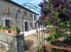 B&B Paternocchio, casa per le vacanze a Montefiascone