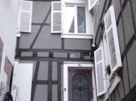 Le Tanneur, au coeur de Ribeauvillé, apartment in Ribeauvillé