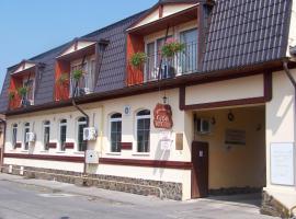 Vila Veche, pensiune din Haţeg