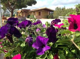 Tortuga Casa Vacanze, resort village in Scarlino