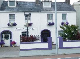 Anam Cara B&B, hotel near University College Cork, Cork