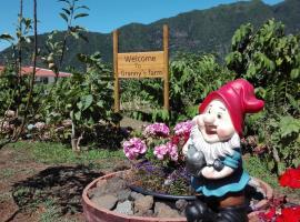 Granny's farm, self-catering accommodation in São Vicente