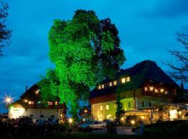 Hotel Zollner, Hotel in der Nähe von: KärntenTherme Warmbad-Villach, Gödersdorf