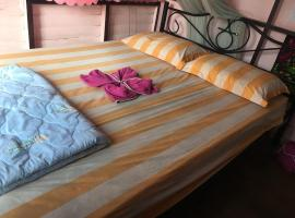 New Phiman Riverview Guesthouse, hotel in Bangkok