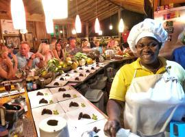 Zimbali Culinary Retreats, spa hotel in Negril