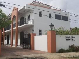 Spanish Dream Hotel, hotel in Kingston