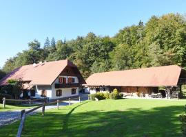 Turistična kmetija Šeruga, hotel v mestu Novo Mesto