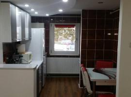 Honey apartment, hotel in Hunedoara