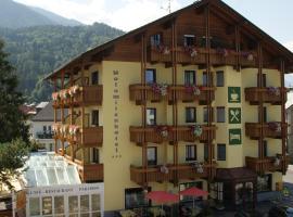 Dolomitenhotel, Hotel in der Nähe von: Biedneralm, Lienz