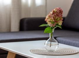 Violetos Lux Apartamentai2, apartamentai mieste Druskininkai