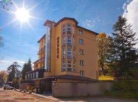 Hotel Henryk – hotel w mieście Krynica Zdrój