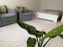 Уютная квартира, hotel near Ice Stadium Mytischi, Mytishchi