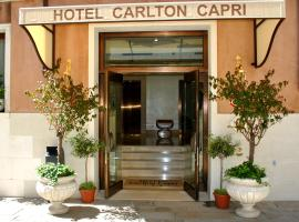 Hotel Carlton Capri, hotel in Venice