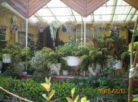 Habitaciones Betito, hotel en Mazamitla
