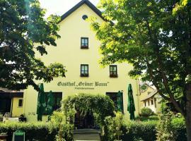 Hotel-Landgasthof Grüner Baum - Dittigheim, Hotel in Tauberbischofsheim