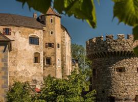 Burg Plankenstein, Hotel in Texing