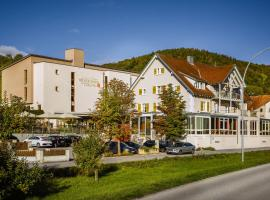 Landhotel Wilder Mann, hotel near Rhine Falls, Eggingen